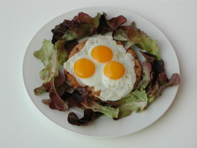 haltbarkeit eier hartgekocht